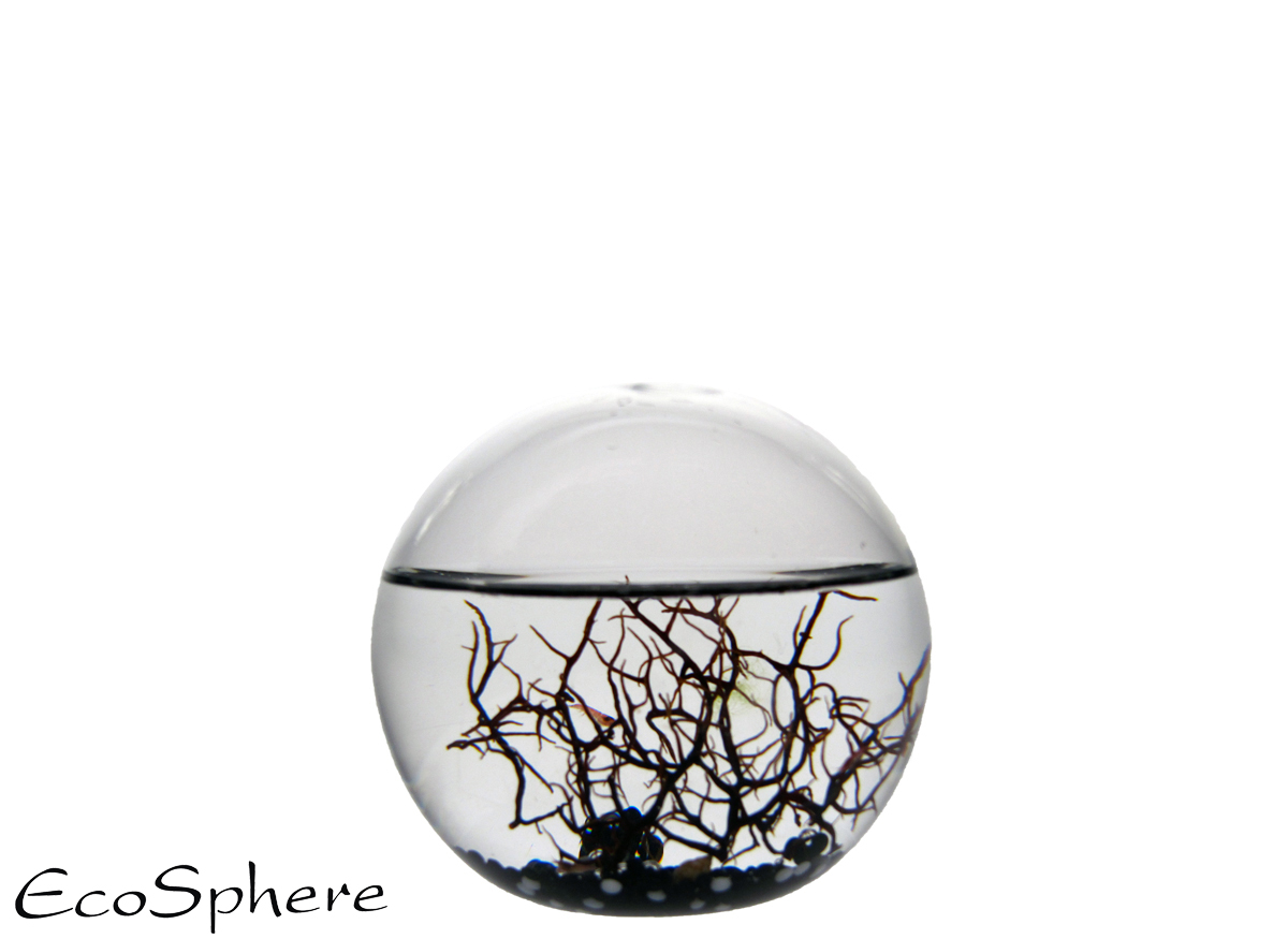 Ecosphera Sphere Black - 10 Cm