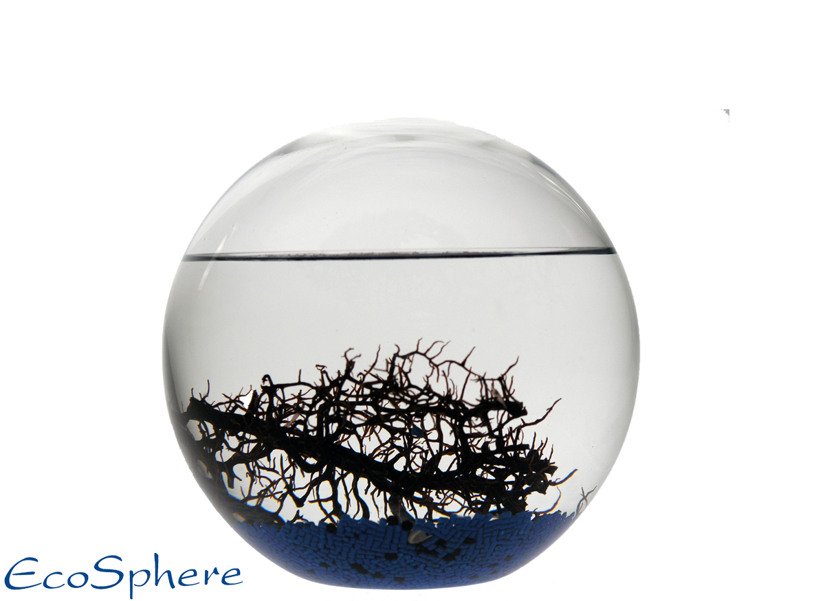Ecosphera Ocean Sphere 16 Cm