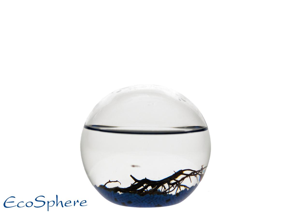 Ecosphera Ocean Sphere - 10cm